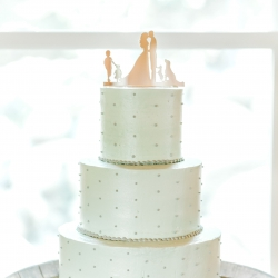 Gorgeous cake created by Wow Factor Cakes shows simple elegance in its silver tone with delicate teal dots