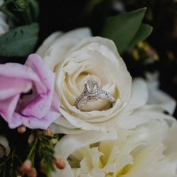 wedding rings on a white rose