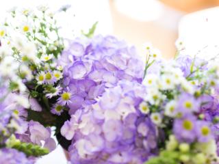gorgeous purple hydrangeas for an April North Carolina wedding