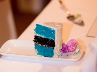 Panthers themed wedding cake layers
