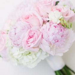 Bridal bouquet full of pale pink roses and white hydrangeas captured by Paige Ryan Photography for a wedding at The Dairy Barn