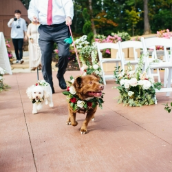 Couples dogs sport custom floral collars created by LB Floral for a fall wedding at The Magnolia Venue