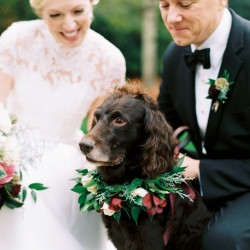 Jimmy Blooms creates a custom floral dog collar for a winter wedding at Carmel Country Club