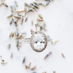 Detail shot of engagement ring captured by Charlotte Wedding Collective