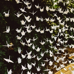 Handmaid cranes served as the backdrop to a stunning outdoor ceremony coordinated by Magnificent Moments Weddings