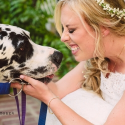 Barks and Blooms created the perfect way for a Charlotte couple to include their sweet dogs in the Duke Mansion wedding