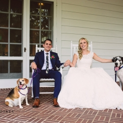 Bride and groom pose with their dogs on the southern porch of the Duke Mansion in Charlotte, North Carolina
