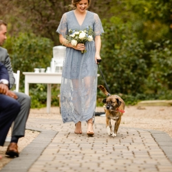 A bridesmaids escorts the couples dog down a cobblestone aisle to an outdoor ceremony at Morning Glory Farms