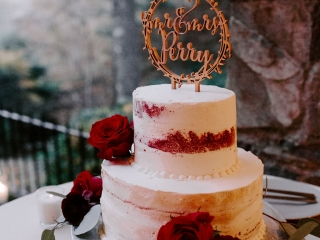 Two tiered cake from Publix features white icing and dark burgundy roses for a fall wedding reception in Asheville, North Carolina
