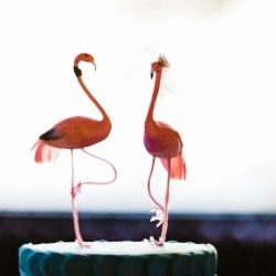 Unique cake toppers show off a fun flamingo vibe for a wedding captured by Gandee Photography