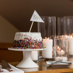 Bride creates a stunning cake for her wedding reception coordinated by Magnificent Moments Weddings