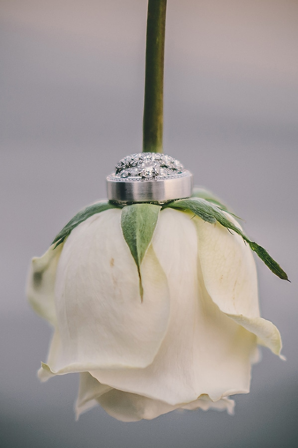 wedding rings from diamonds direct