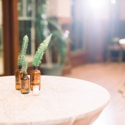 Amber bottles with ferns created by Narcisse Greenway Design acts as simple centerpieces for cocktail tables during a fall wedding coordinated by Magnificent Moments Weddings