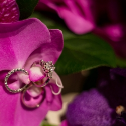 Sharon Ashley Photography captures the stunning details of bridal jewelry during a fall wedding in Uptown Charlotte