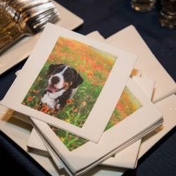 More custom touches include napkins that show off the couples dogs during a fall wedding coordinated by Magnificent Moments Weddings