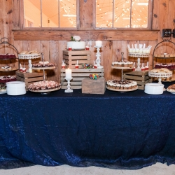 Deep blue linen from creative solutions was the perfect accent for a dessert bar catered by Family Catering