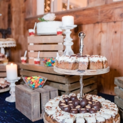 Family Catering created an amazing dessert display for a fun wedding reception held at The Diary Barn in Fort Mill, South Carolina