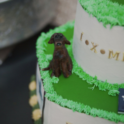 puppy on a groom's cake by Sweet Scene cakes