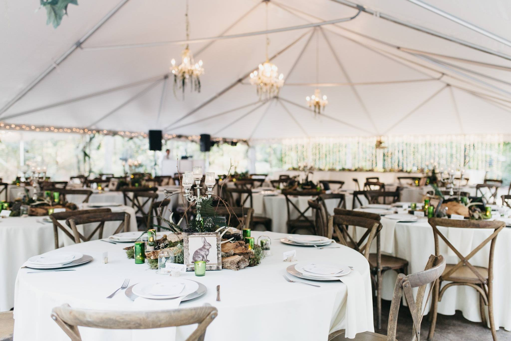 Morning Glory Farms wedding reception with Tuscan chairs.
